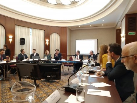 INESS na Healthcare roundtable