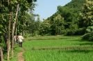 Zelenou proti prírode