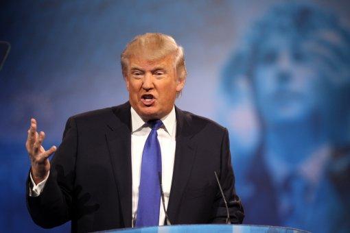 Program Trumpa