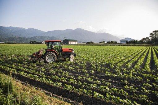 Čo znamená Plán obnovy bez pozemkových úprav?