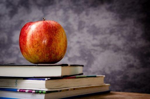Hodnota učiteľov za peniaze