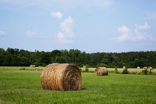 Hodnotenie volebných programov - pôdohospodárstvo