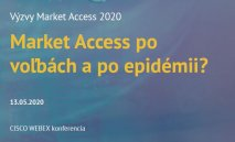 INESS na online workshope Market Access