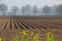 Pôda ako nástroj politického boja
