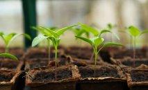 Ľudia, ekológia a roboty v poľnohospodárstve